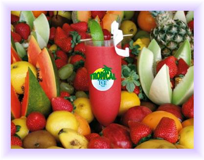 Tropical Ice Slush Machine and Ice Cream Machine Suppliers - New ...